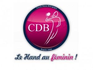 Cercle-Dijon-Bourgogne-300x227