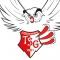 logo TSG Friesenheim