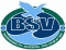 BSV Bjerringbro-Silkeborg